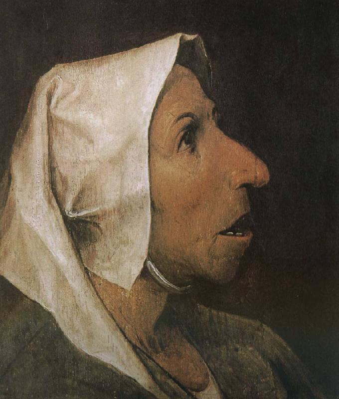 """""""Голова крестьянки"""", 1564"""