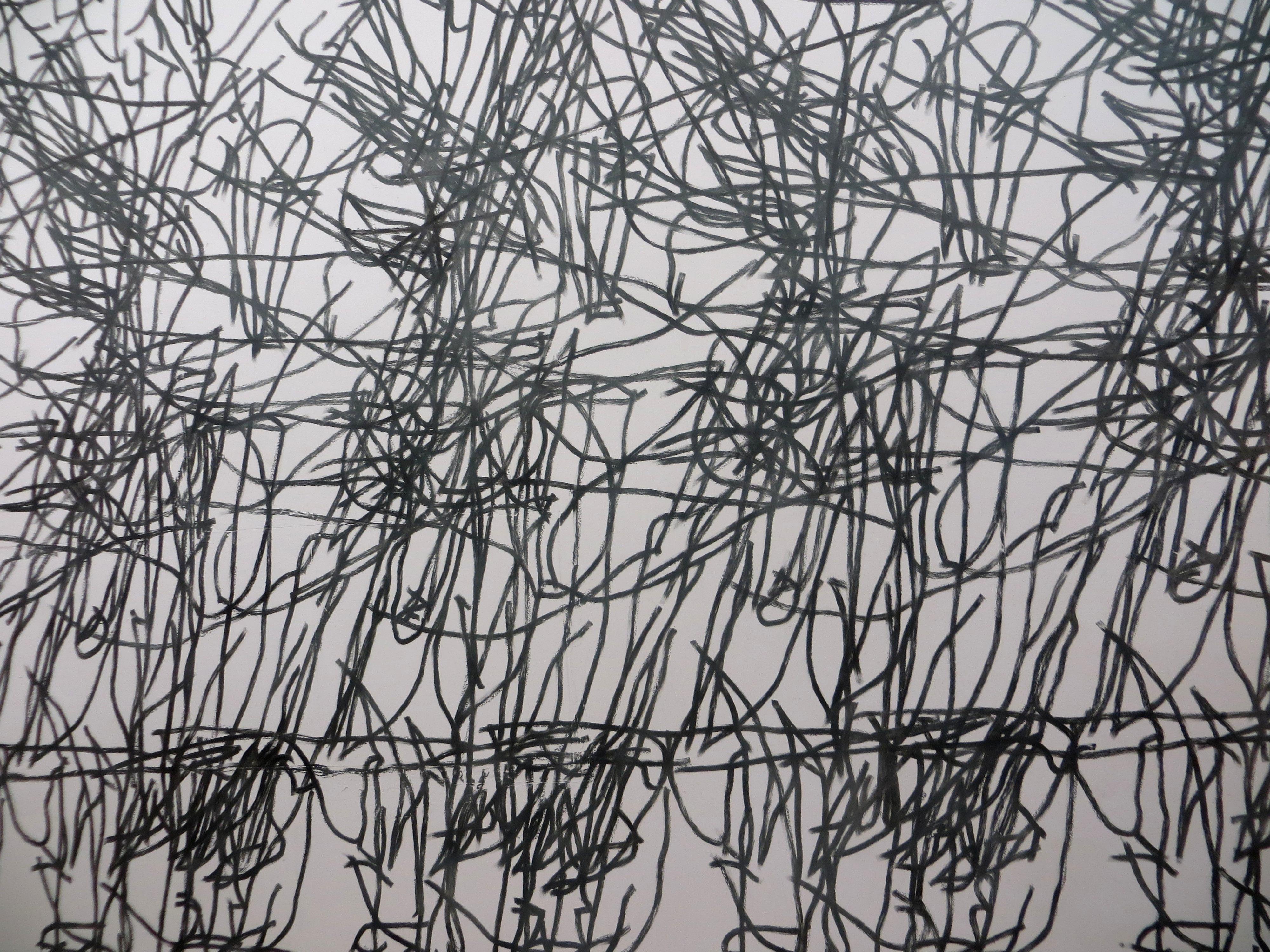 Фрагмент работы Ильи Гришаева