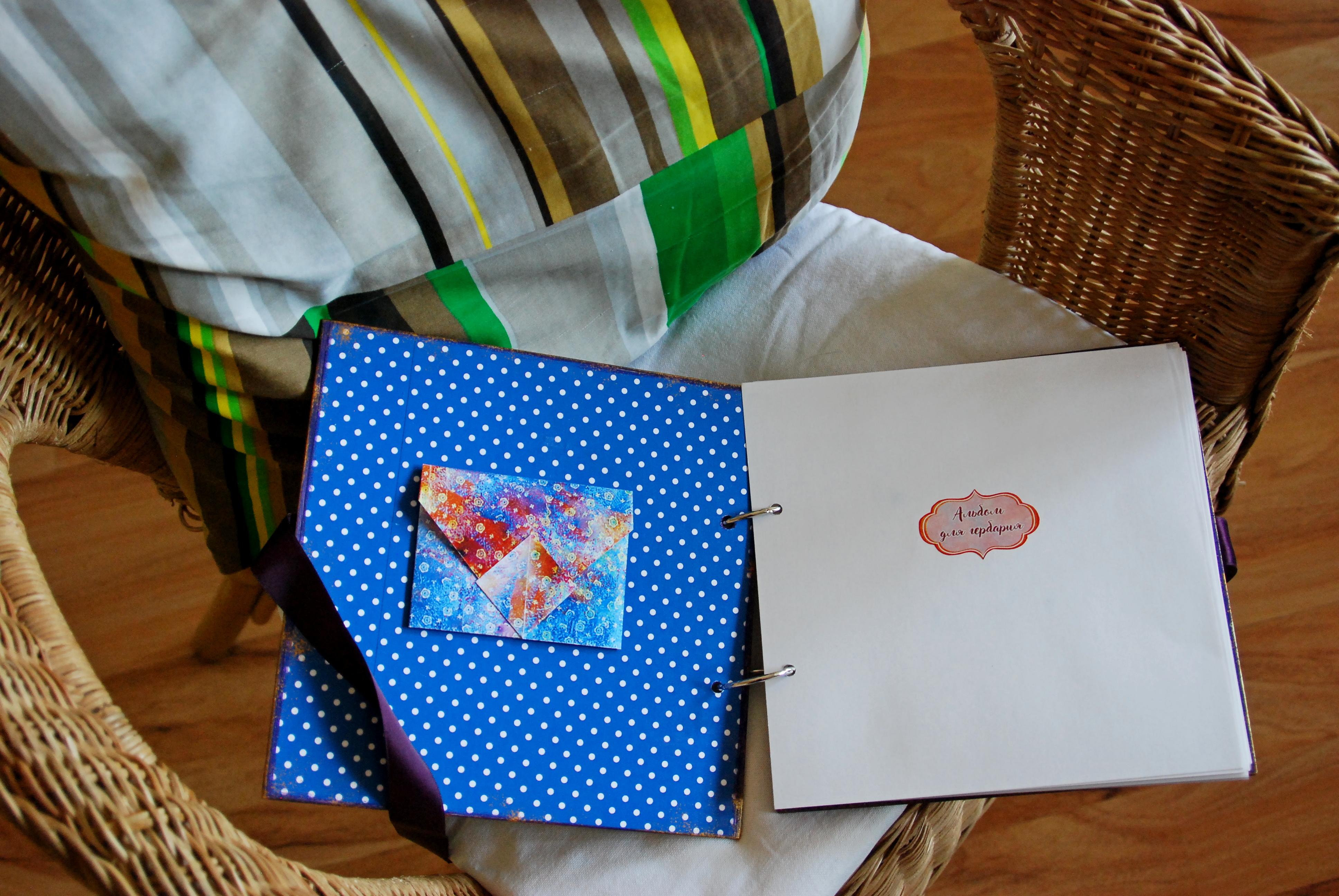 Помимо живописи Ольга занимается еще изготовлением авторских альбомов для гербария